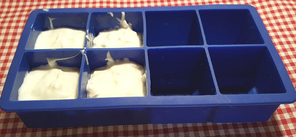 Homemade Yogurt Starter