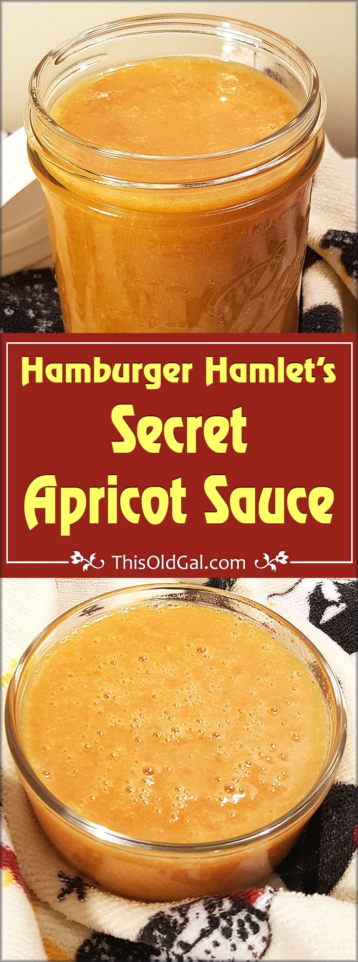 Hamburger Hamlet's Secret Apricot Dipping Sauce