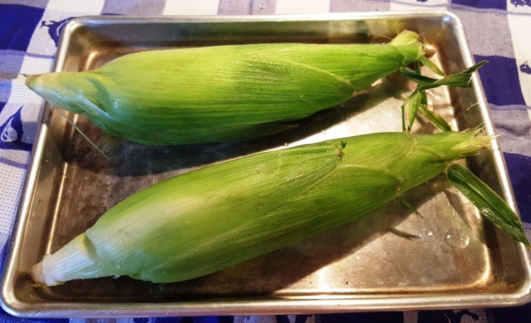 Corn with husks intact on a baking tray