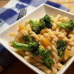 Pressure Cooker Blue Cheese Broccoli Butternut Pasta