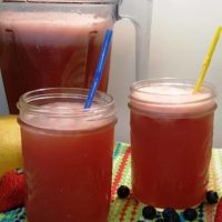 Vitamix Watermelon Lemonade Over Ice