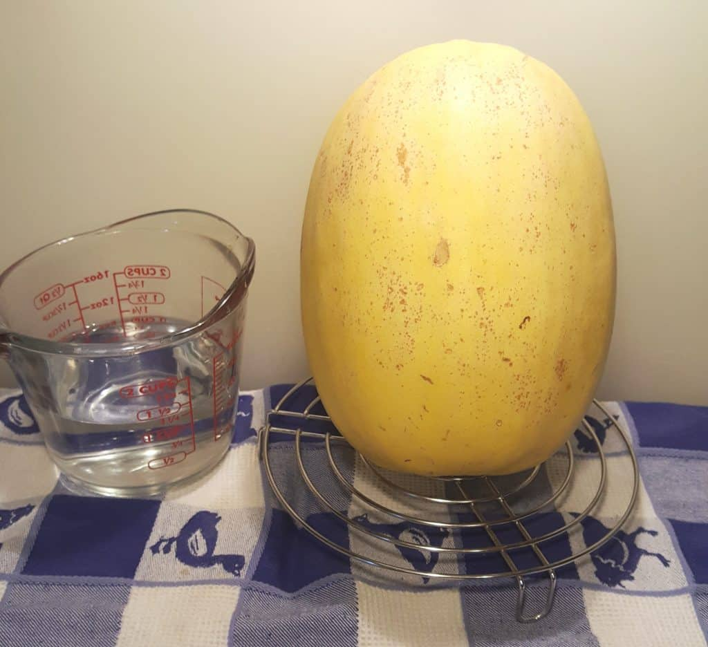 Cast of Ingredients for Instant Pot Pressure Cooker Spaghetti Squash