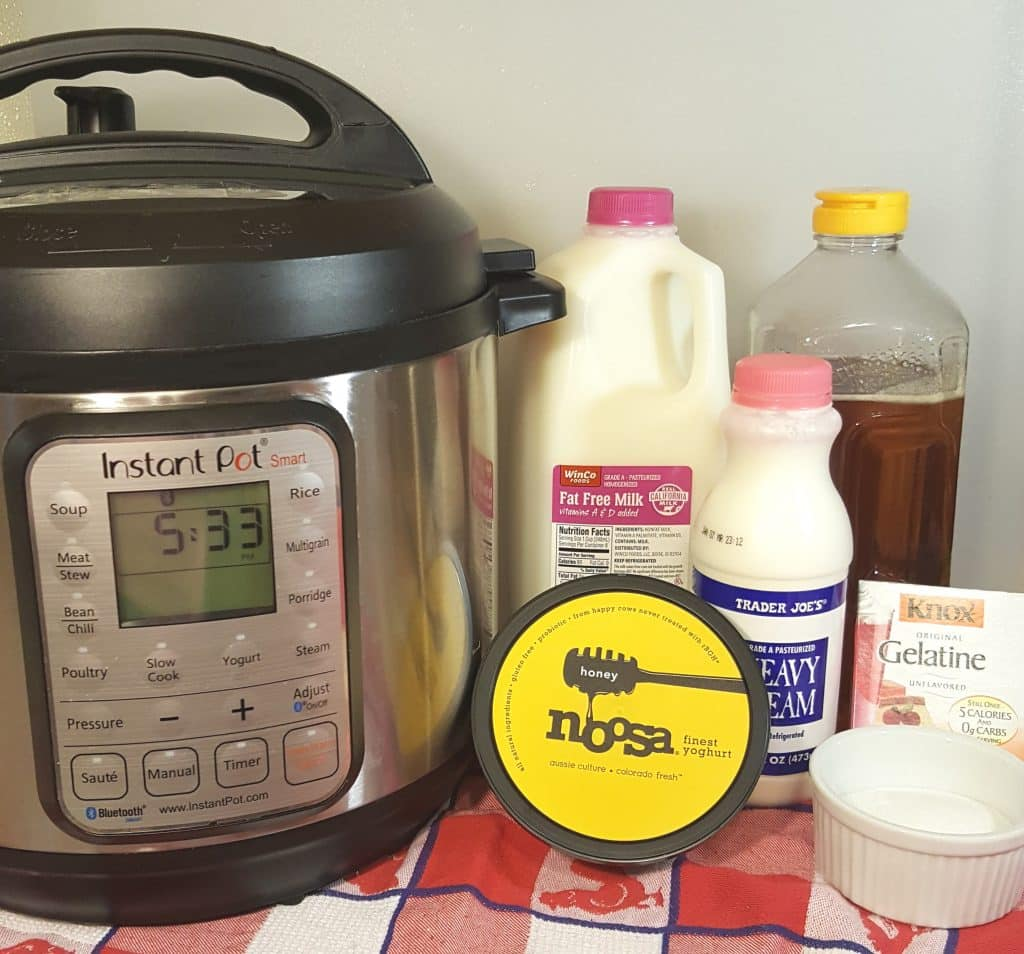 Cast of Ingredients for Instant Pot Homemade Noosa Yoghurt