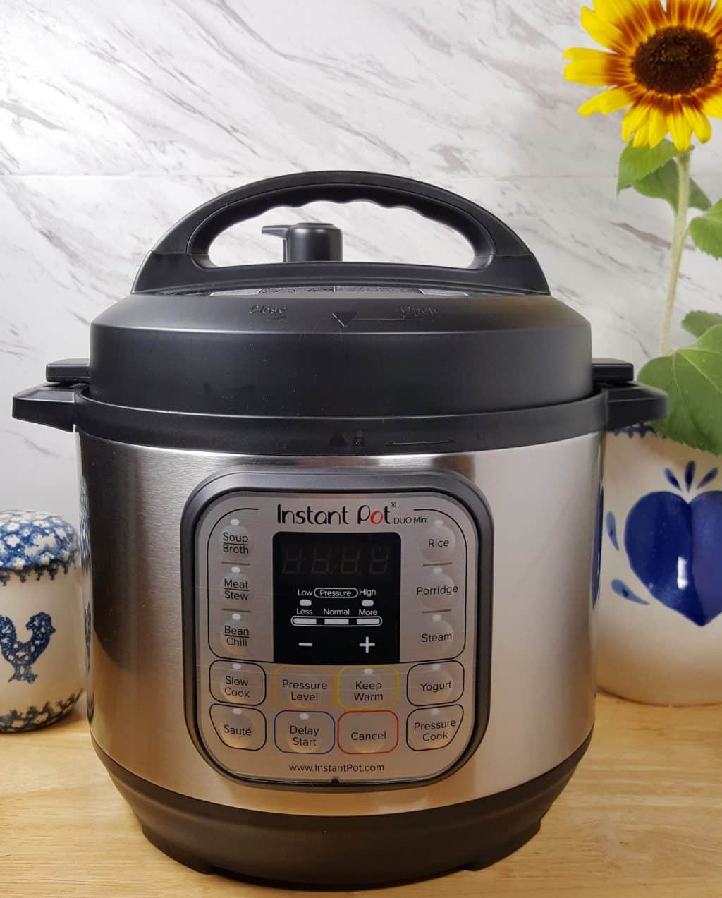 Instant Pot Duo Mini 7-in-1 Pressure Cooker Review | This Old Gal