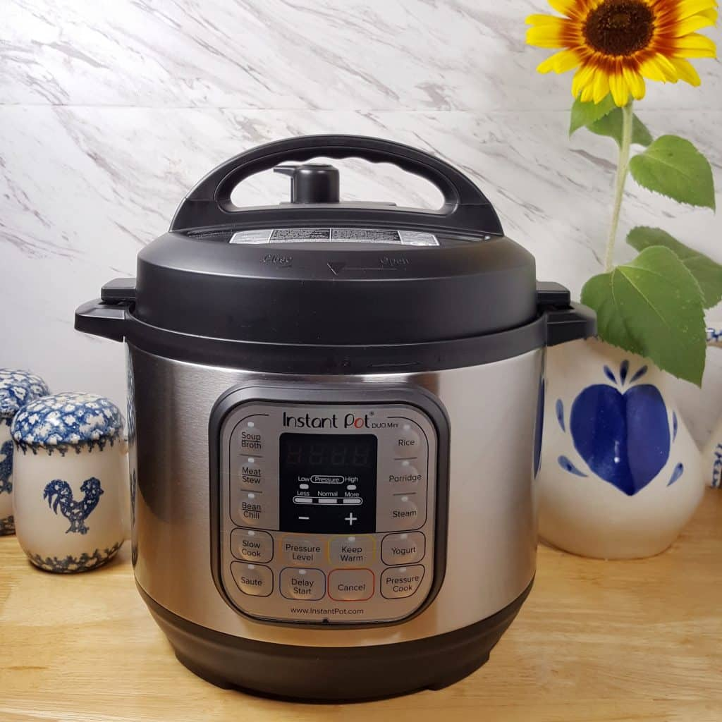 Instant Pot Duo Mini 7 In 1 (Mini *Plus* To Me