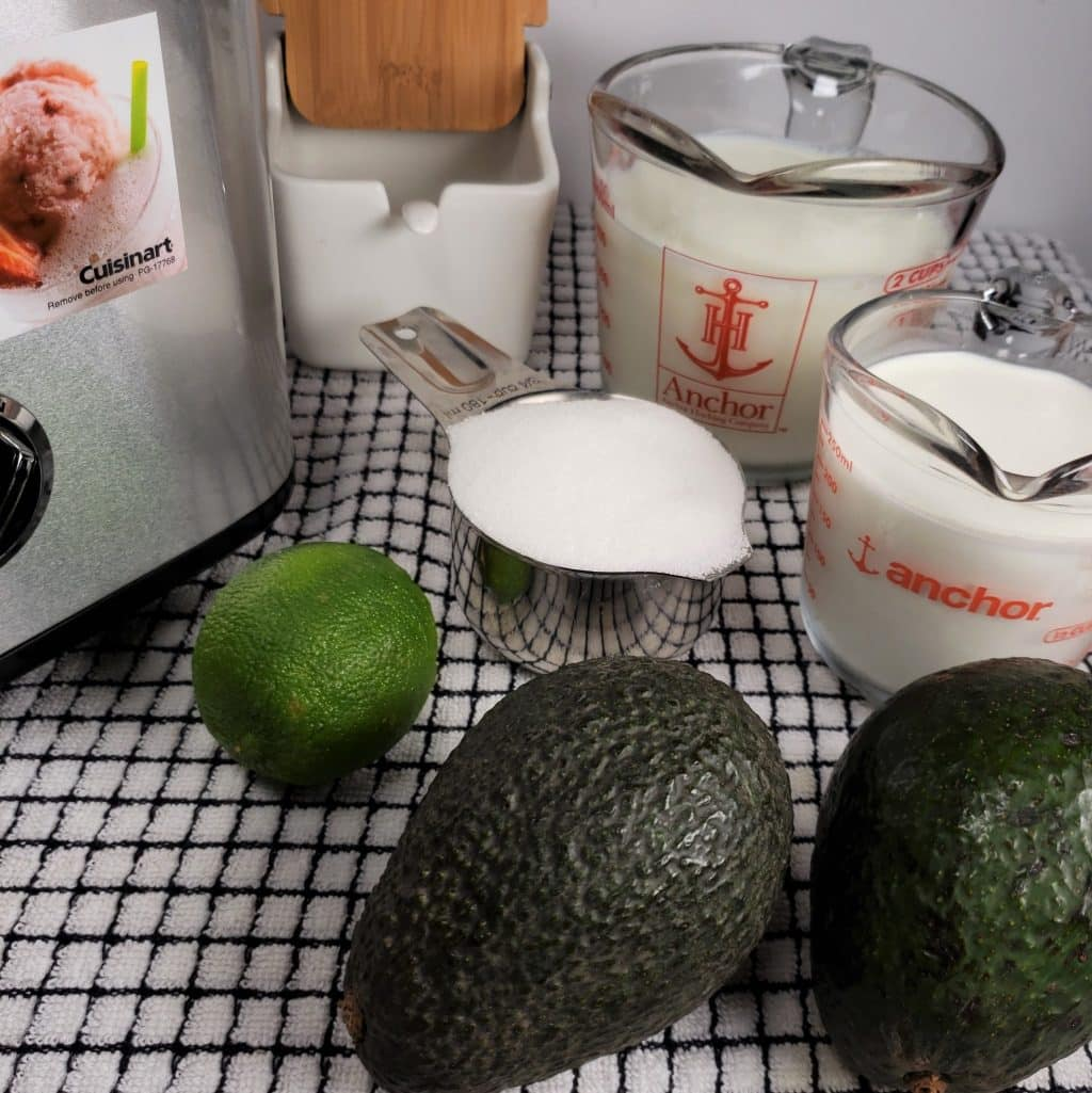 Cast of Ingredients for Homemade Avocado Ice Cream