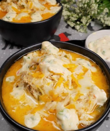 Instant Pot Chicken Jalapeno Popper Soup