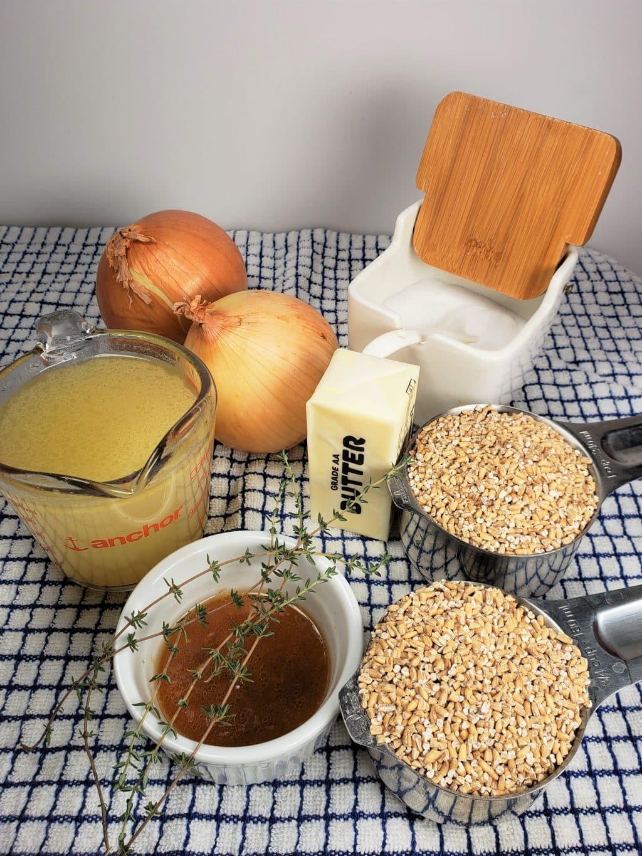 Cast of Ingredients for Instant Pot Skirlie