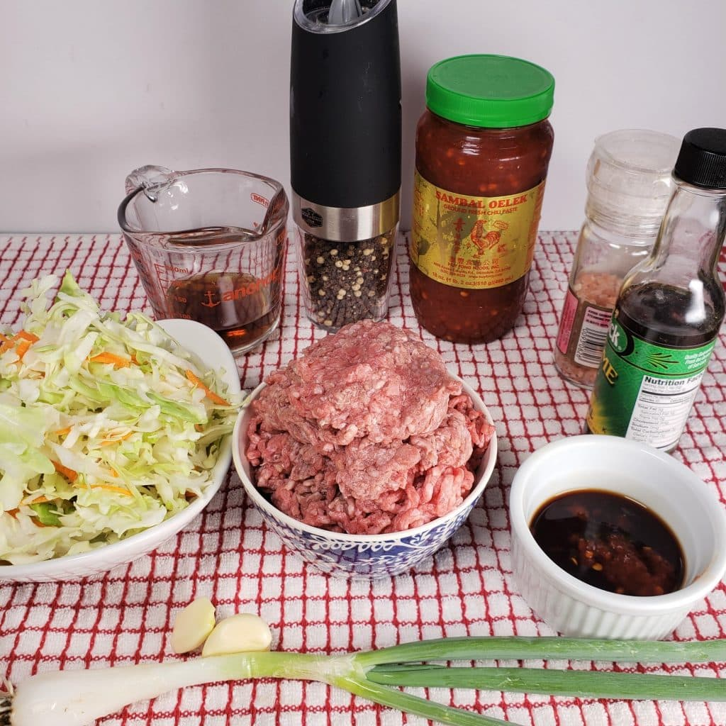 Cast of Ingredients for Instant Pot Crack Slaw