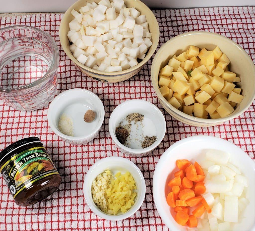 Instant Pot ACE Blender Root Vegetables Soup